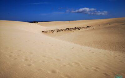 Fuerteventura 2019 | Dünen von Corralejo