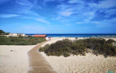 Fuerteventura 2019 | Caleta del Bajo