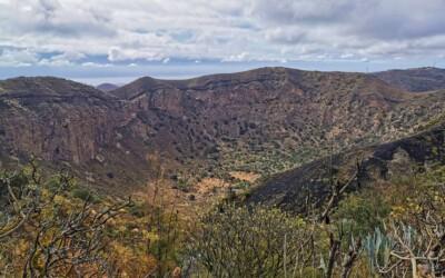 Caldera de Bandama – 2021
